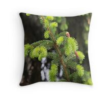 pine in the spring Throw Pillow