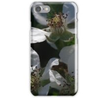 Blackberry Blossoms iPhone Case/Skin