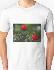 roses in the garden Unisex T-Shirt