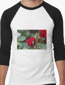 roses in the garden Men's Baseball ¾ T-Shirt