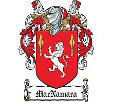 MacNamara Coat of Arms (Clare, Ireland) Photographic Print