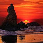 Oregon Sunset  by Lanis Rossi