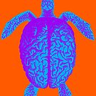 Psychedelic Turtle Brain by monsterplanet