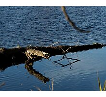 Reflecting Shapes Photographic Print