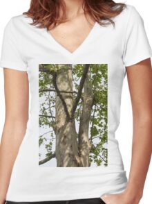 tree in spring Women's Fitted V-Neck T-Shirt