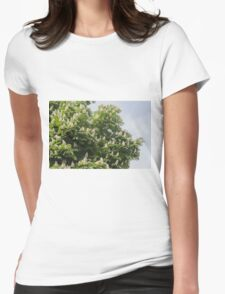 tree in spring Womens Fitted T-Shirt