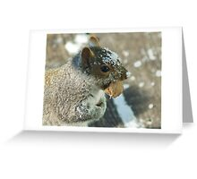 Squirrel with Brazil Nut Greeting Card