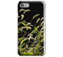 Prevailing Winds iPhone Case/Skin