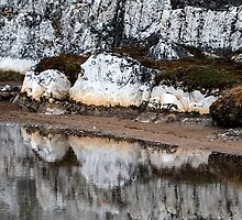 Marble Island Reflection by Marylou Badeaux