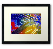American beauty, through celebration and sorrow Framed Print