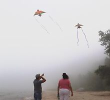 Playing with Kites in Fog by Timothy  Ruf
