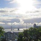 San Francisco Bay Morning by David Denny