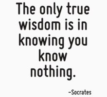 The only true wisdom is in knowing you know nothing. by Quotr