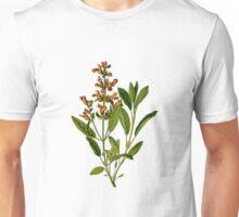 Medicine perennial plant sage Unisex T-Shirt