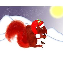Cute Red Squirrel Snowy Christmas Scene Photographic Print