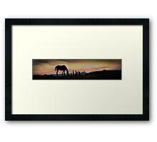 Horse silhouette Framed Print