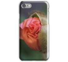 A poppy is born iPhone Case/Skin