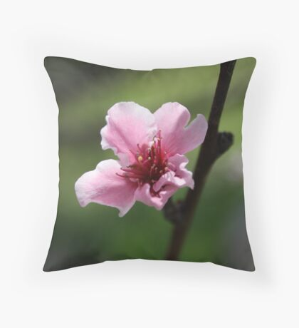 Another Cherry Blossom Throw Pillow
