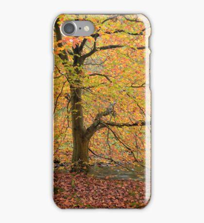 Autumn at Brock Bottom iPhone Case/Skin