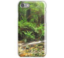 Hebe River Downstream..#2 iPhone Case/Skin