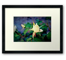 Reaching into your heart Framed Print