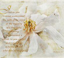 God does all things-Ecclesiastes 11:5 by vigor