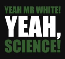 Yeah Mr White! Yeah, Science! by ScottW93