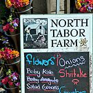 North Tabor Farm by phil decocco