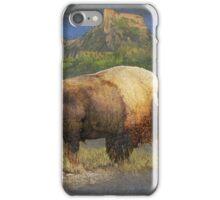 brief altercation - bison and prairie dog iPhone Case/Skin