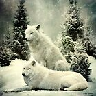 wolfpack by 1chick1