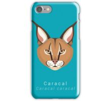 Three Big Cats iPhone Case/Skin