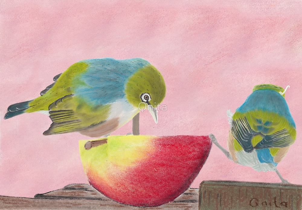"""AndreaEL's """"Holding the Apple Up!"""" in Pastel...  (Wax Eye NZ – Southland) by Qnita"""