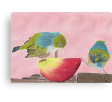 "AndreaEL's ""Holding the Apple Up!"" in Pastel...  (Wax Eye NZ – Southland) Canvas Print"