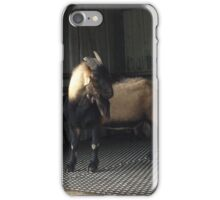 Goat me on iPhone Case/Skin