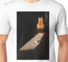 Ginger cat ignoring toy mouse Unisex T-Shirt
