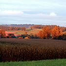 September's Fields by TrendleEllwood