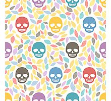 Funny sugar skulls Photographic Print