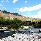 River with stones by dedakota