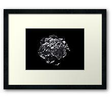Backyard Flowers In Black And White 19 Framed Print