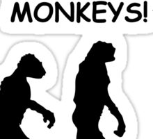 """Hey, I'm Being Followed by Monkeys!"" Funny Human Evolution Sticker"