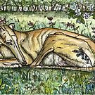 Sweet May Morning by Elle J Wilson