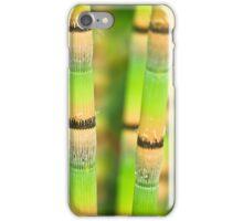 Fresh Little Bamboo iPhone Case/Skin