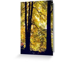 Autumn Silhouette Greeting Card