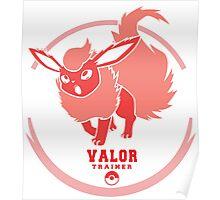 Team Valor Trainer Poster
