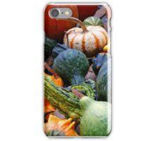 US - Massachusetts - Gourds Galore iPhone Case/Skin