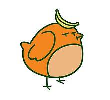 Orange Banana Bird Photographic Print