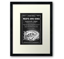 Nests and Eggs Framed Print