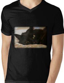 Little Fellow Mens V-Neck T-Shirt