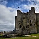 Trim Castle by Michelle McMahon
