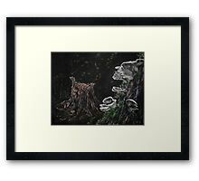 Oregon Mushrooms Framed Print